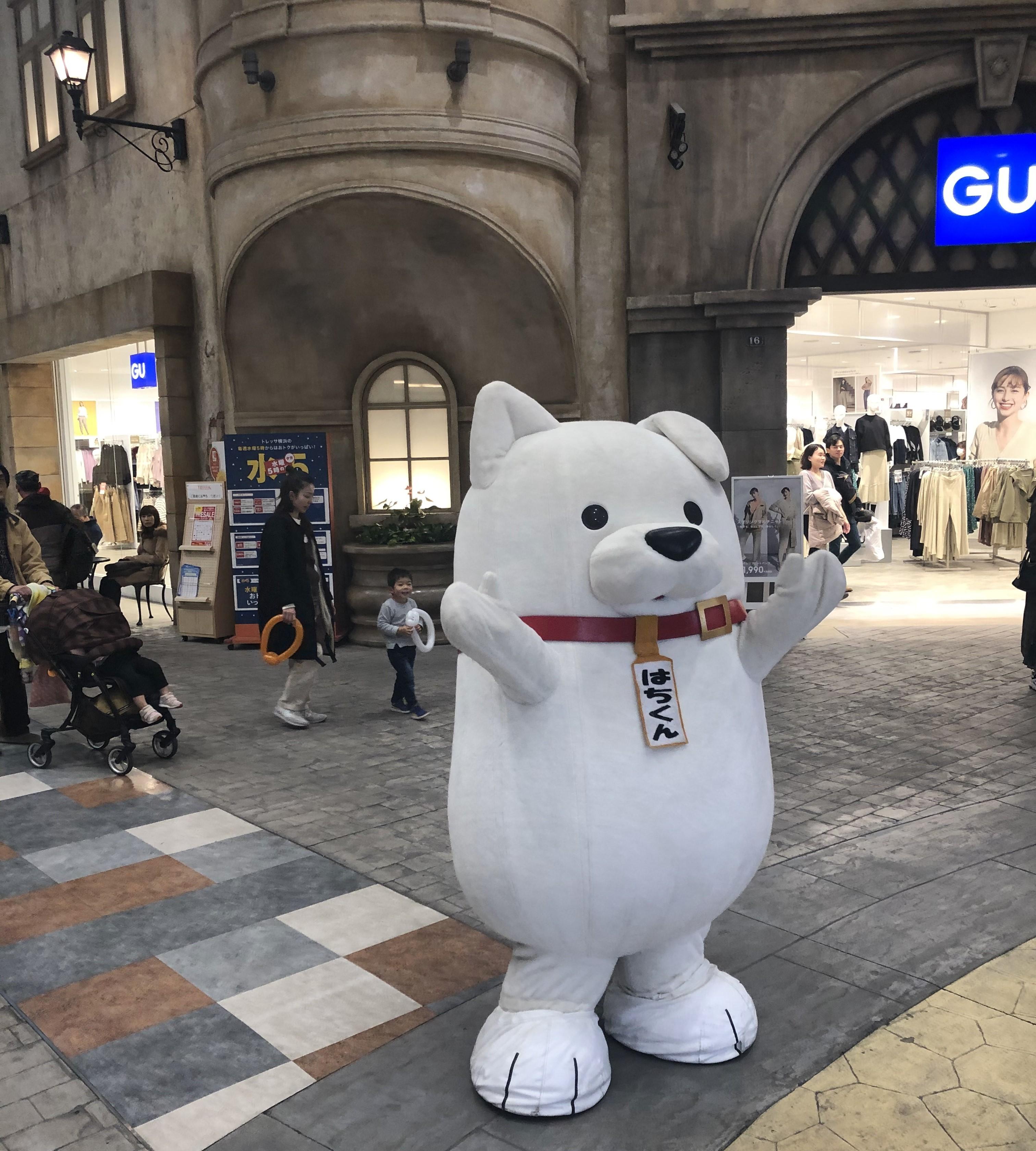 秋田県・大館市観光キャラクター はちくんのイメージ